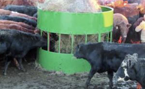 cow hay feeders